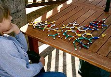 Asperger syndrome often display intense interests