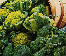 Food That Kill Fats